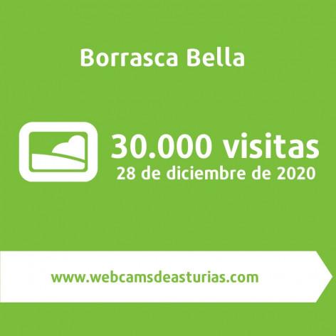 Miles de personas siguieron la llegada de Bella al Principado de Asturias desde nuestras cams