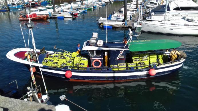La costera de la xarda en Asturias en directo desde las cams instaladas en Lastres