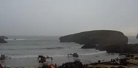 La recolección de ocle (algas) en directo desde la Playa de Barro