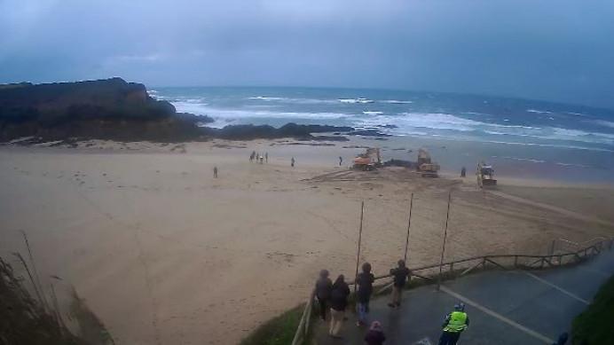 Fallece el rorcual varado ayer en la Playa de Serantes, Tapia de Casariego